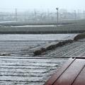 ベランダより降雪風景