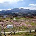 新府の桃源郷風景10