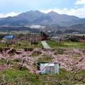 新府の桃源郷風景15