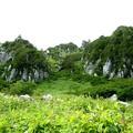 千畳敷カールの風景4
