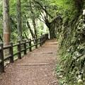 写真: 佛沢(ほっさわ)の滝への道