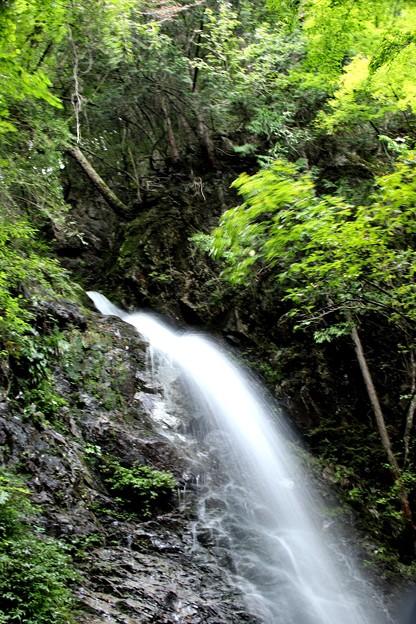 佛沢の滝上風景