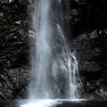 写真: 滝壺(払沢の滝)