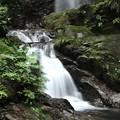 写真: 清流の滝