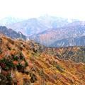 大観峰よりの紅葉風景8