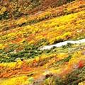 大観峰よりの紅葉風景10