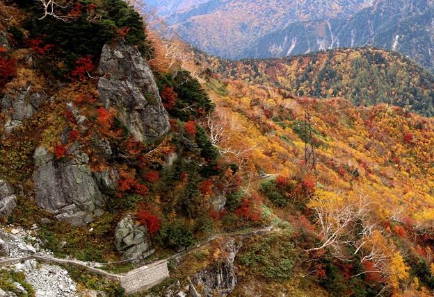 大観峰よりの紅葉風景13