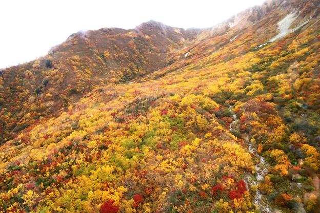 大観峰よりの紅葉風景24