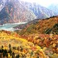 紅葉の黒部湖2