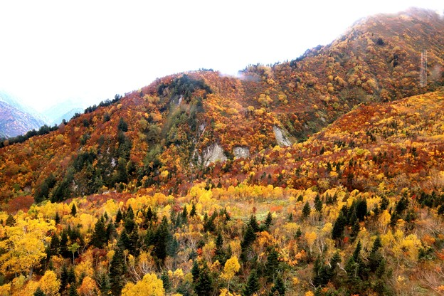 大観峰よりの紅葉風景25