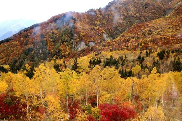 大観峰よりの紅葉風景26