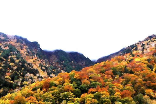 扇沢からの紅葉風景