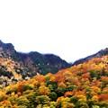 写真: 扇沢からの紅葉風景