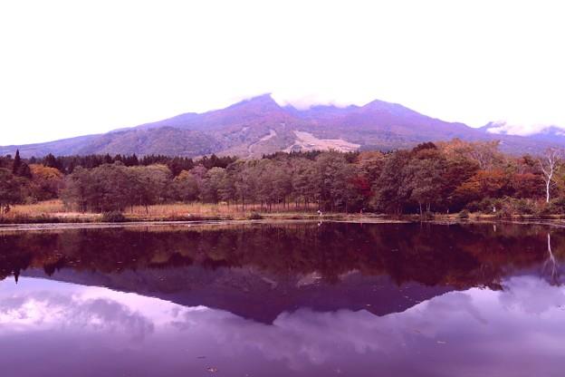 いもり池よりの妙高山