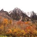 紅葉の上に聳える谷川岳