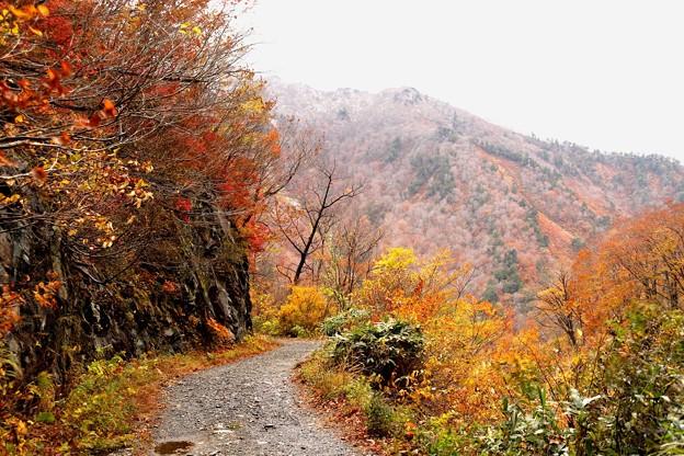 一ノ倉沢より見える紅葉風景2