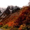 Photos: 一ノ倉岳の紅葉A