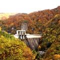写真: 藤原ダム