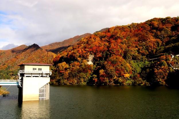 藤原湖の紅葉