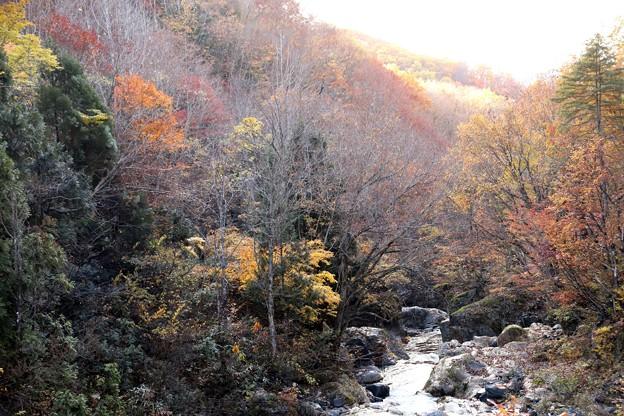 写真: 照葉峡の晩秋風景