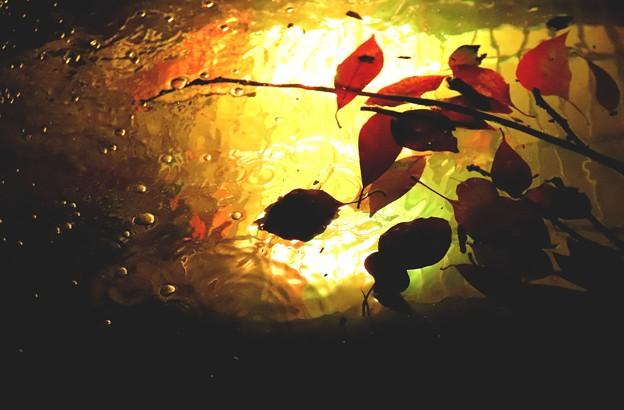 水と彩光のアート2