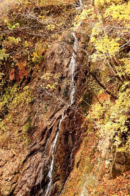 照葉峡の滝の紅葉