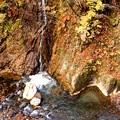 写真: 照葉峡の滝
