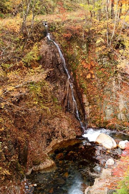 照葉峡の滝の紅葉2