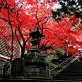 大雄山の紅葉3