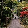大雄山の参道12
