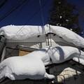 湯桧曽の雪