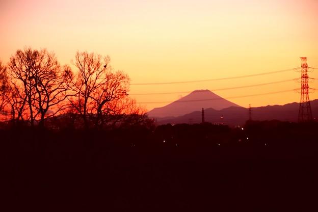 夕暮れの富士山(越辺川より)