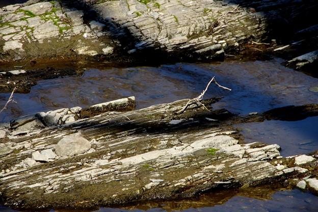 岩のある川の景色