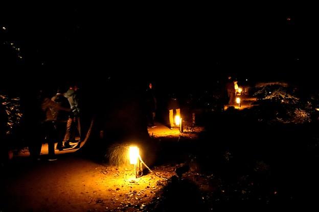 六義園 夜の遊歩道