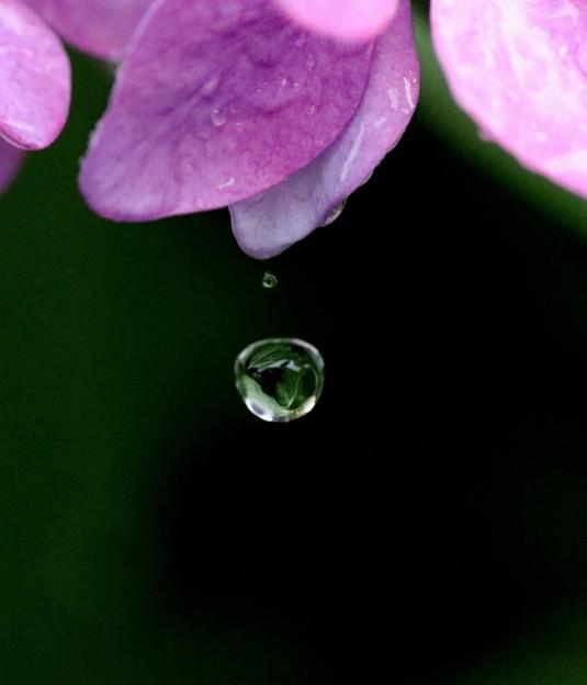 落下する雫玉への反映2
