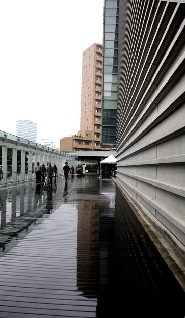 雨の日の国立新美術館風景5