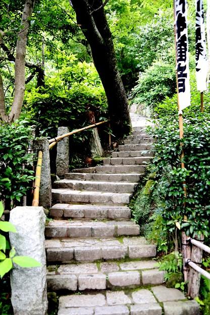 杉本寺への石段