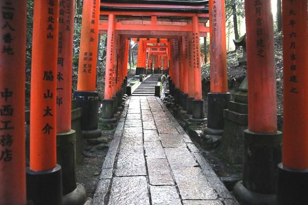 伏見稲荷 鳥居の回廊13