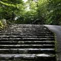 Photos: 三千院の階段