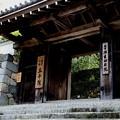 Photos: 三千院の御殿門1