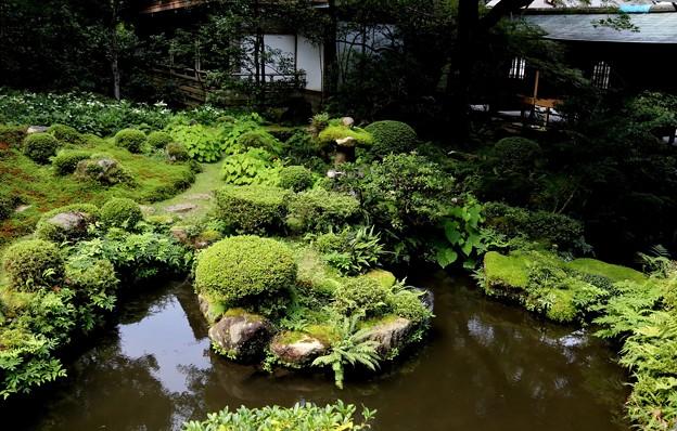 三千院 庭園3