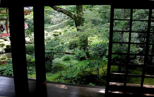 三千院 部屋から眺める庭園2
