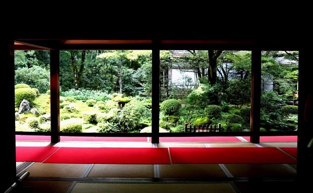 三千院 部屋からの望む庭園5