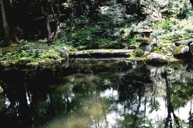 三千院 池の庭園