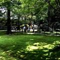 Photos: 三千院 苔の庭園11