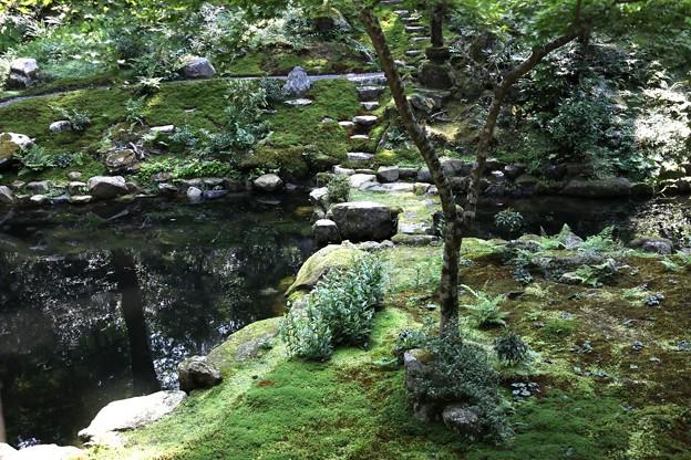 三千院 池の庭園2