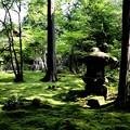 Photos: 三千院 苔の庭園15