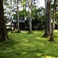 Photos: 三千院 苔の庭園17