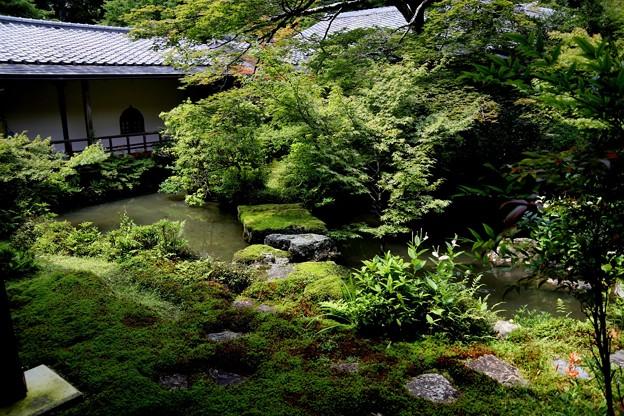 実相院の池の庭園4
