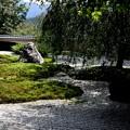 実相院の池の庭園5